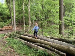 Kind balanciert auf einem Baum